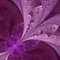 Beautiful fractal flower in vinous and purple computer generate generated graphics Royalty Free Stock Photography
