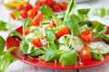Beautiful fresh salad with tomatoes and other vegetables food Royalty Free Stock Images