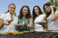 Beautiful friends barbecuing at park portrait of female Stock Photography