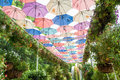 Beautiful garden decorated with colourful umbrellas Royalty Free Stock Photo