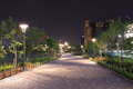 Beautiful garden walkway with lamps at night Royalty Free Stock Photo