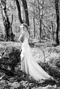 Beautiful girl bride in green wood by summer Royalty Free Stock Image