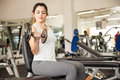 Beautiful girl doing bicep curls at the gym pretty young brunette on a bench Royalty Free Stock Photos
