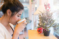 Beautiful girl drinking hot coffee or tea in coffee cafe model asia women female of thai people Stock Photography