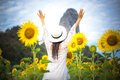 Beautiful girl in field of sunflowers, so happy and relax. Royalty Free Stock Photo