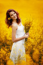 Beautiful girl in the field young Royalty Free Stock Photography