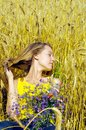 Beautiful girl in golden field Royalty Free Stock Photography