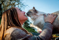Beautiful girl playing with a rescued stray cat plays on sunny day Stock Photography