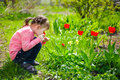 Beautiful girl sitting on his haunches and sniffing tulips on th eyes closed red the flowerbed Stock Photo