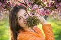 Beautiful girl smelling a pink sakura flowers young enjoy the smell of spring of on sunny day Royalty Free Stock Image