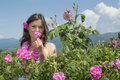 Beautiful girl smelling a rose in rose field Royalty Free Stock Photo
