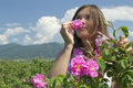 Beautiful girl smelling a rose in a rose field Royalty Free Stock Photo