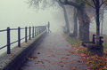 Beautiful girl standing beside walkway railing on misty autumn day Royalty Free Stock Photo