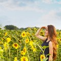 Beautiful girl with sunflowers Royalty Free Stock Photo