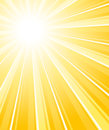 Beautiful glaring sunburst vertical background vector Stock Photography