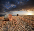Beautiful golden hour hay bales sunset landscape Royalty Free Stock Photo