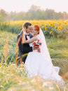 Beautiful gorgeous redhair bride and stylish handsome groom posing in a sunflower sunny field Royalty Free Stock Photo