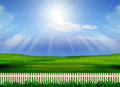 Beautiful grass field and wood fence use for natural background multipurpose Royalty Free Stock Image