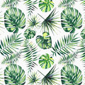 Beautiful green tropical cute lovely wonderful hawaii floral herbal summer pattern of a palms watercolor Royalty Free Stock Photo