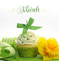 Beautiful green and yellow spring theme cupcake with doffodils and decorations for the month of march sample text or copy Royalty Free Stock Image