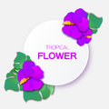 Beautiful greeting card with purple tropical flowers and circle frame. Royalty Free Stock Photo