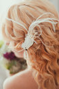 Beautiful hairstyle female with feather closeup Stock Photography