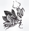 Beautiful hand drawn Mantis beetle. Royalty Free Stock Photo