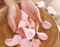 Beautiful hands of the woman and rose petals Royalty Free Stock Photo