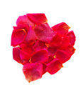 Beautiful heart of pink rose petals isolated on white Royalty Free Stock Images