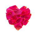Beautiful heart of pink rose petals isolated on white Stock Photography