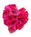 Beautiful heart of pink rose petals isolated on white Royalty Free Stock Photography