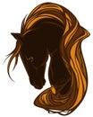Beautiful horse Royalty Free Stock Photo