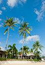 Beautiful house with palm trees on the beach Royalty Free Stock Photography