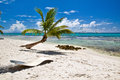 A beautiful image of caribbean paradise Stock Image