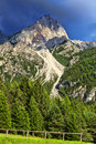 Beautiful image fresh green forest base rocky peak dolomites mountains italy Stock Images