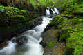 Beautiful irish waterfall Stock Images