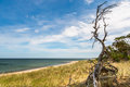 Beautiful island landscape summer view of sea, beach, sky and nature. Royalty Free Stock Photo