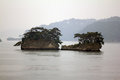 Beautiful islets in Matsushima covered with pines growing on roc Royalty Free Stock Photo