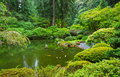 Beautiful japanese garden amazing zen Royalty Free Stock Image