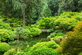 Beautiful japanese garden amazing zen Stock Image
