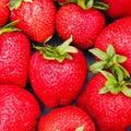 Juicy strawberries Royalty Free Stock Photo