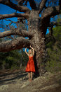 Beautiful lady and mighty tree fashion photo of Royalty Free Stock Photos