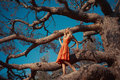Beautiful lady and mighty tree fashion photo of Royalty Free Stock Images