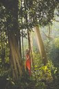 Beautiful lady in tropical forest young red dress Stock Images