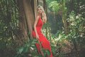 Beautiful lady in tropical forest young red dress Royalty Free Stock Photos