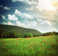 Beautiful landscape composition of nature Royalty Free Stock Images