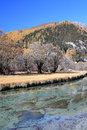 Water, nature, reflection, winter, tree, sky, leaf, river, plant, mountain, snow, bank, spring, loch, landscape, reservoir, branch