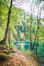Beautiful landscape, mountain lake and mountains with forest Royalty Free Stock Photo