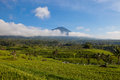 Beautiful landscape of the mountain and rice terraces in Jatiluwih, Bali Royalty Free Stock Photo