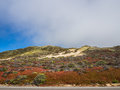 Beautiful landscape of pacific coastline big sur on highway ca usa Royalty Free Stock Photo